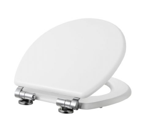 High Gloss White Toilet Seat